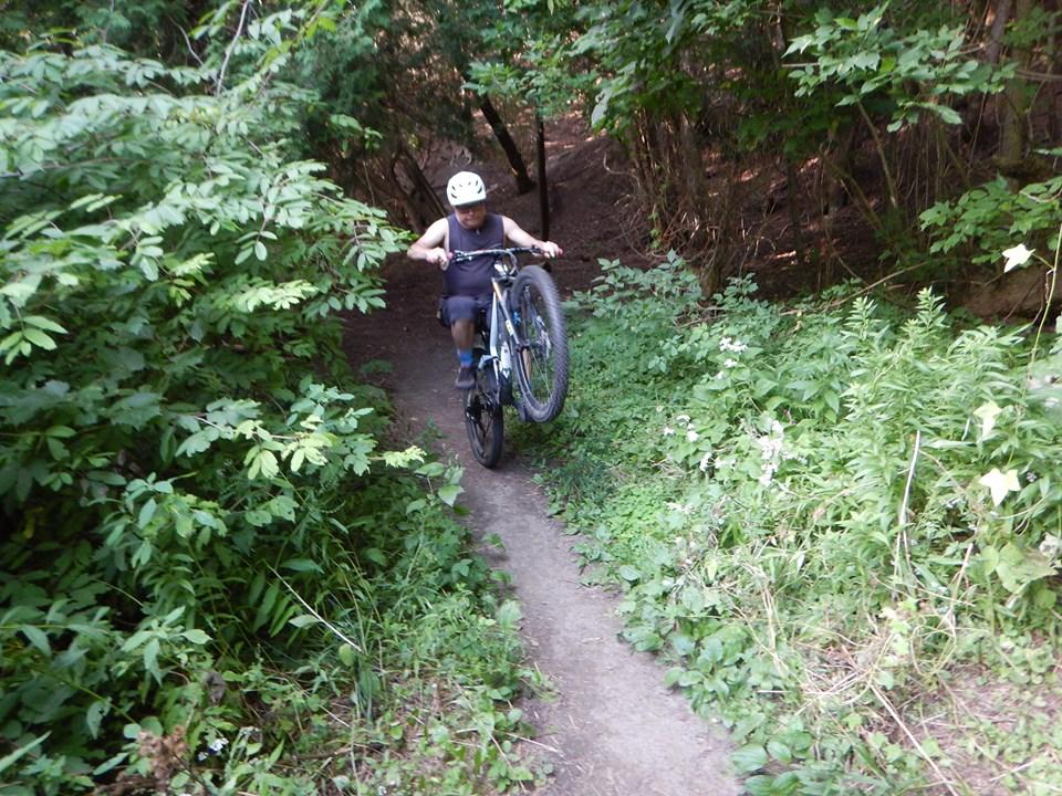 Local Trail Rides-69641409_2454869338090836_7694525518141456384_n.jpg