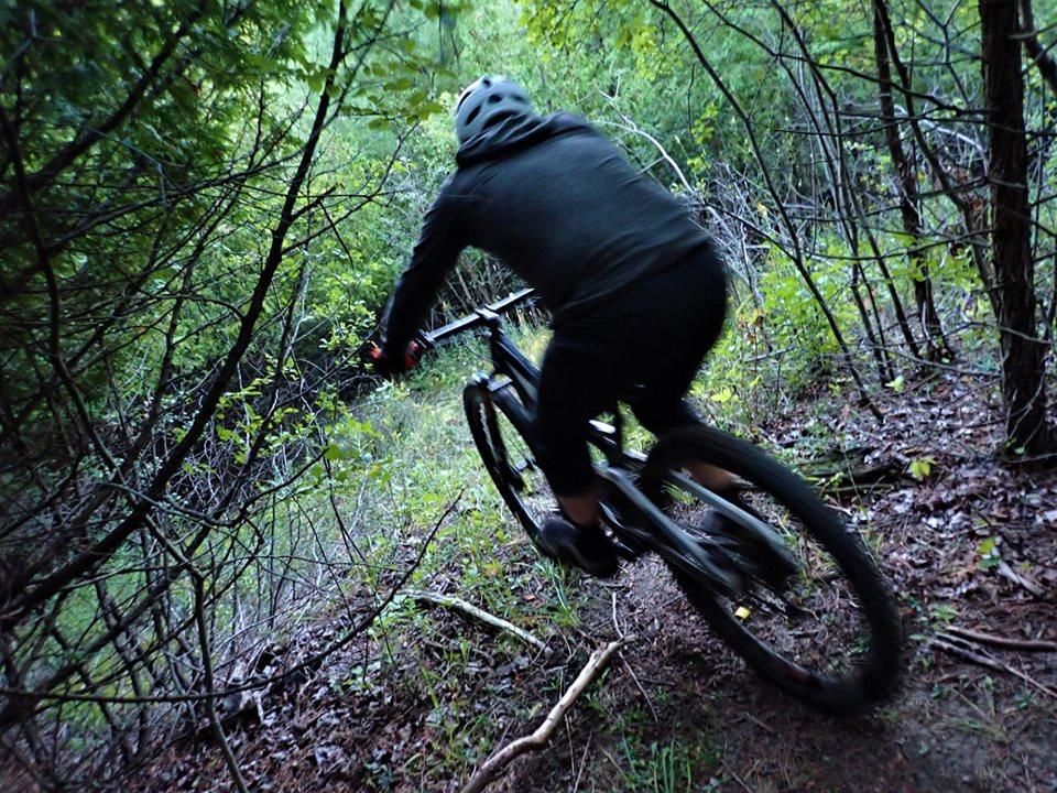 Local Trail Rides-69935907_2463713830539720_1193077013577990144_n.jpg