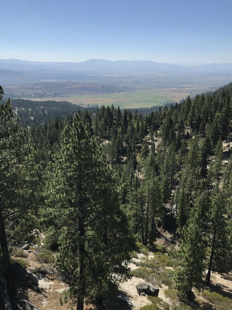 Reno Carson Trail Report Please-6c248dd1-9689-45a9-85d0-2cd20e76000c.jpg
