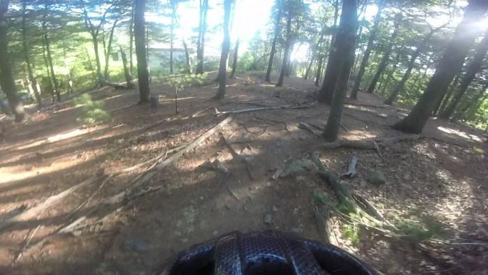 MA Trails Picture Thread-7-fells-mountain-bike-trail.jpg
