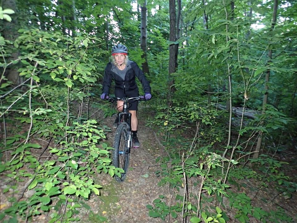 Local Trail Rides-70049059_2466100736967696_3943742647402758144_n.jpg