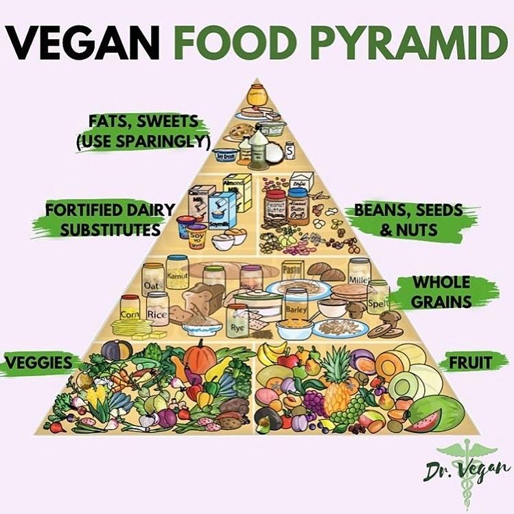 Vegetarian and Vegan Passion-71120602_2494201507340163_7720814308585635840_n.jpg