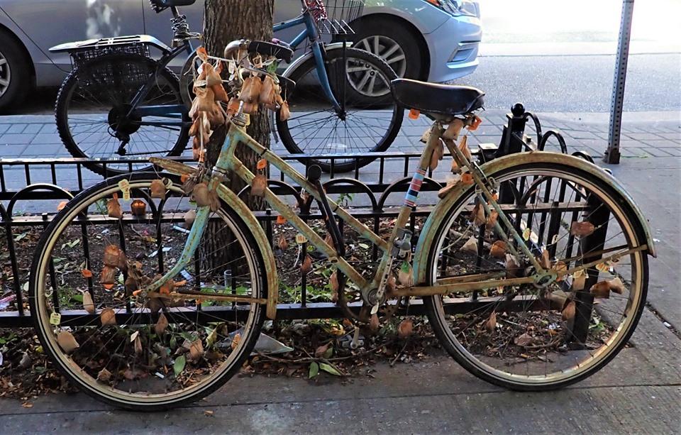 Sad Bikes-71642862_2488332004744569_8089949241390137344_n.jpg