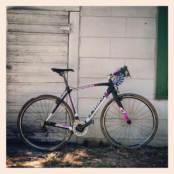 All Our Bikes-733847_10153250614675442_1429967902_n.jpg