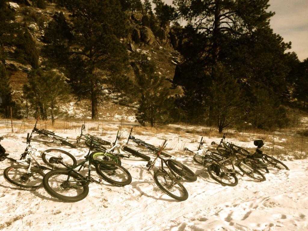 2013 Beerd Belly Ride -With more Belly this year!! Jan. 1 Elk Meadow Upper lot-737924_10151332600748493_1104191441_o.jpg