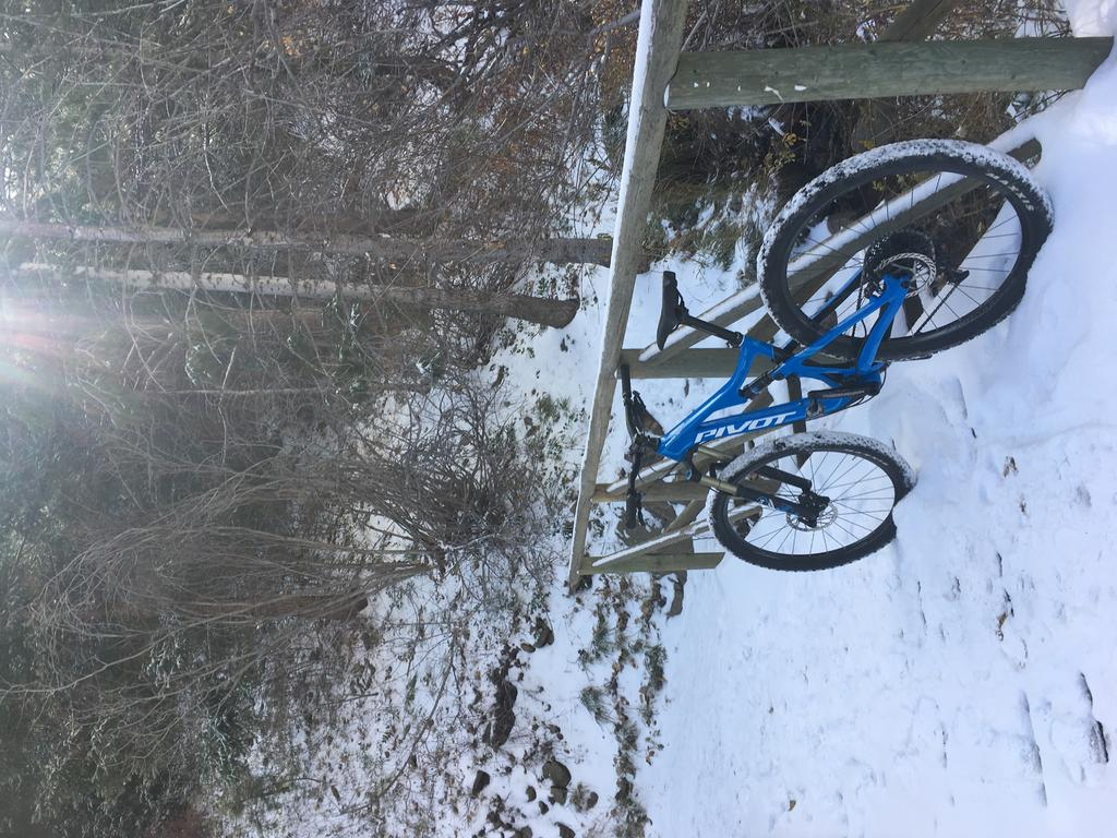 bike +  bridge pics-742d1774-fa0c-440c-aaca-e4234c388ff3.jpg