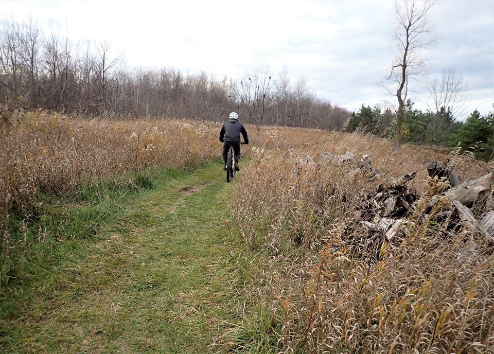 Local Trail Rides-75369157_2516285015282601_3798447631810691072_n.jpg