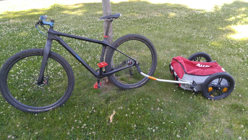 Bike packing the C&O-7836bd86c90b7cf2b2219cde4fc2fc8c.jpg