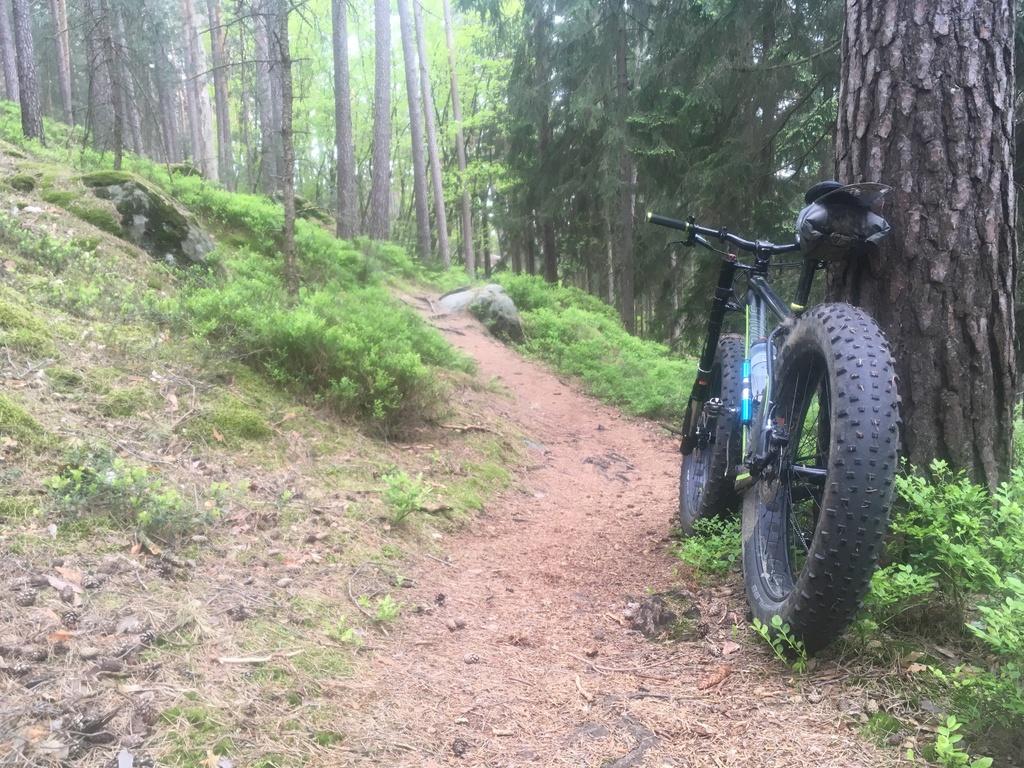 Daily fatbike pic thread-7c4880c9-72bd-462c-94a3-509349196c8a.jpg