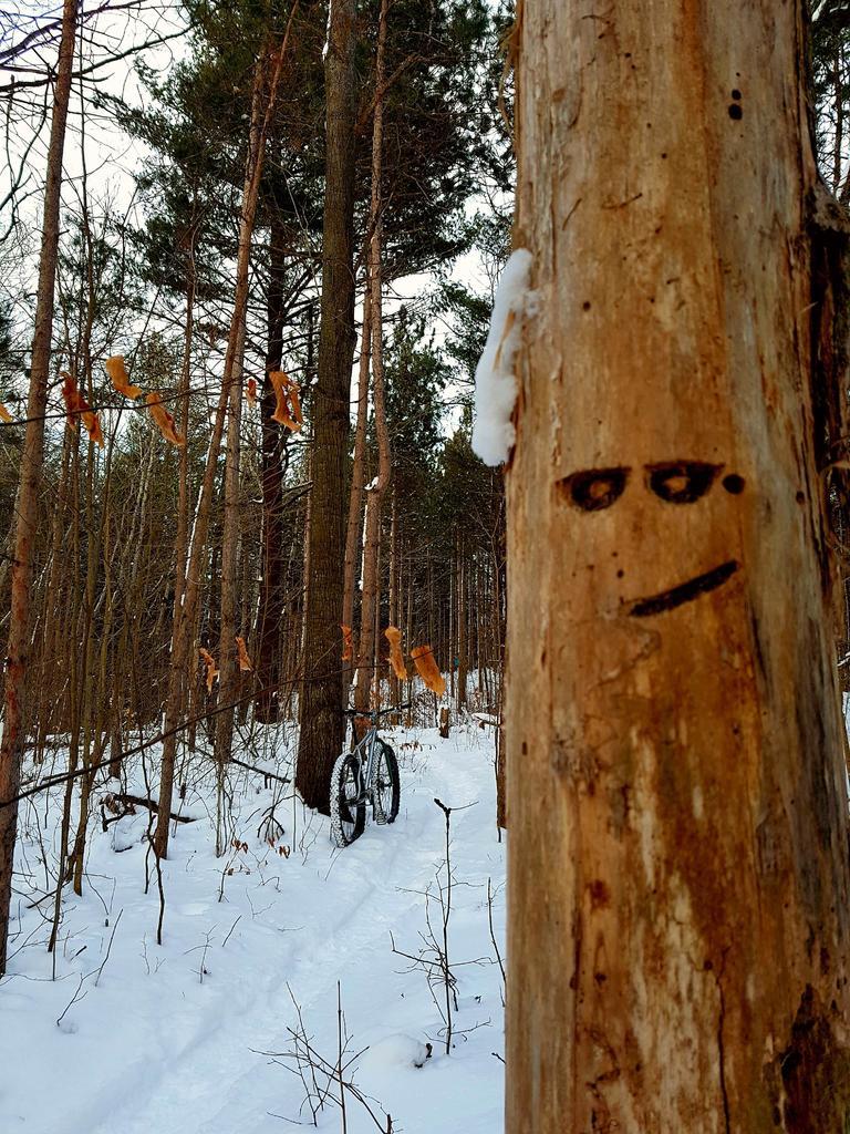 (Winter) Trail Conditions-7dla6jl.jpg
