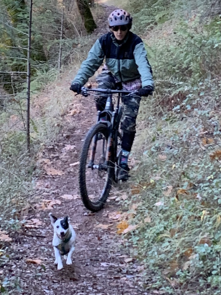 Dec 7-9, 2018 Weekend Ride and Trail Conditions Report-7f857d87-d5e5-4eb5-bb33-fcabc772388d.jpg