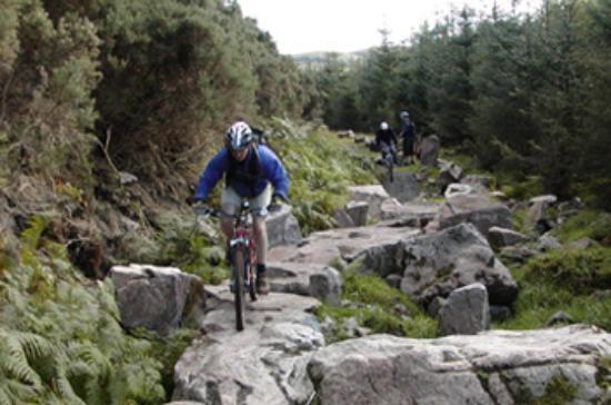 A Good Muddy Trail???-7stanes-glentrool.jpg