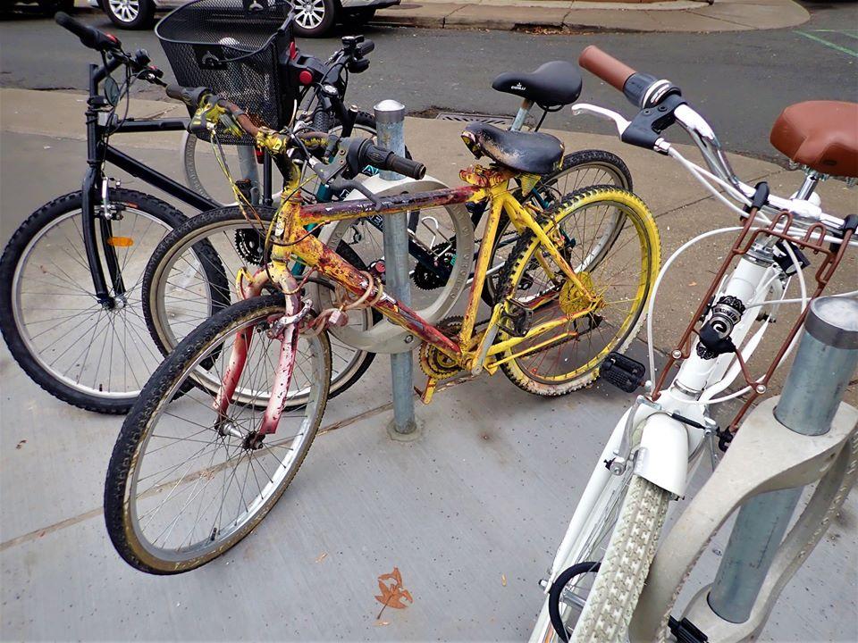 Sad Bikes-80291429_2569087056669063_6544394084419633152_o.jpg