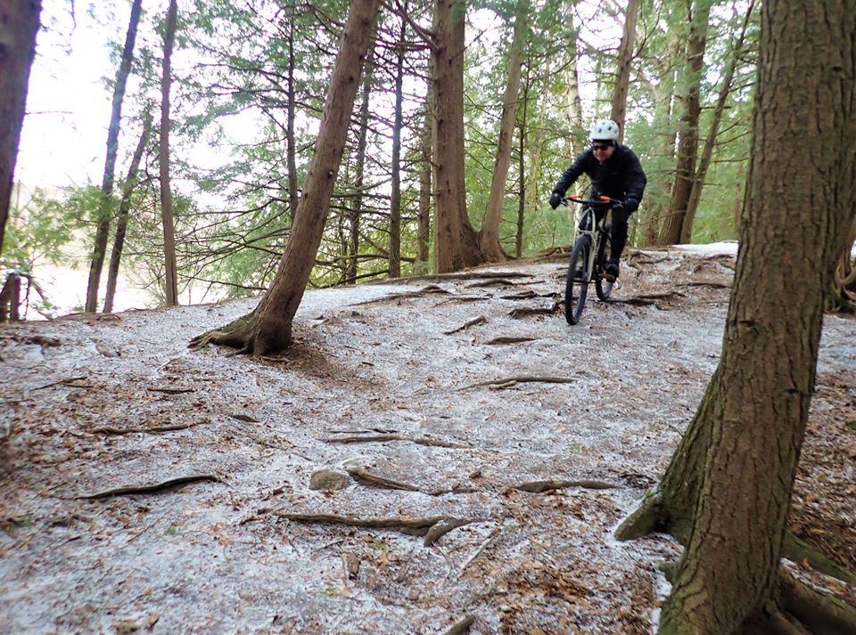 Local Trail Rides-80474785_2558007431110359_2647407739491319808_o.jpg
