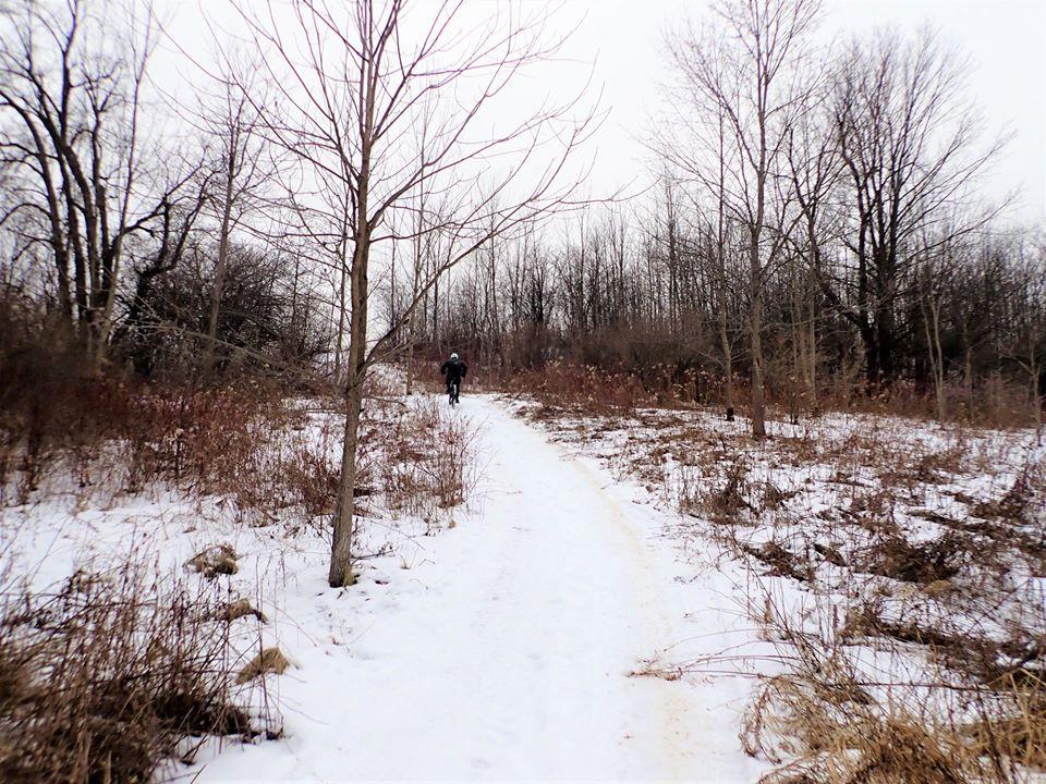 Local Trail Rides-80717854_2567969240114178_4119109250179923968_o.jpg