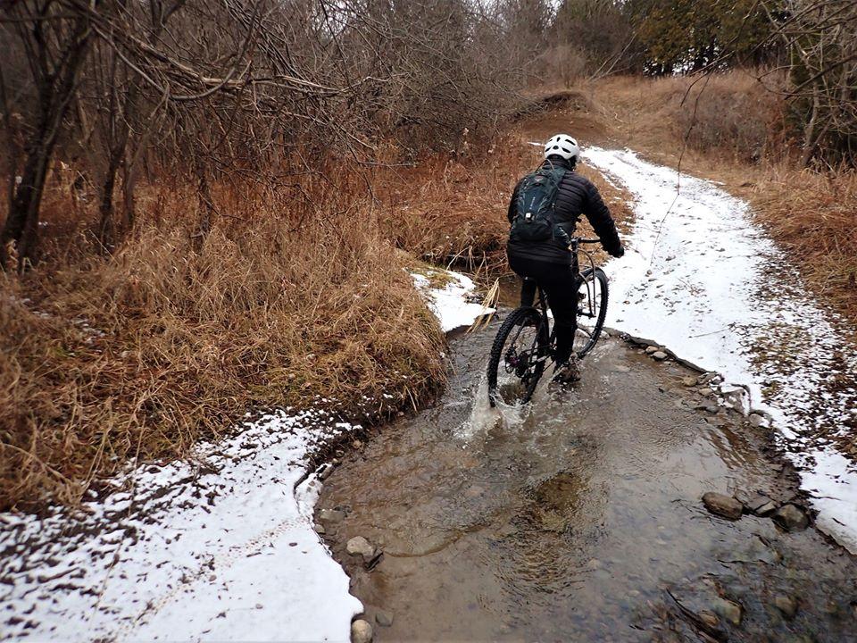 Local Trail Rides-81339777_2579160975661671_497743888782458880_o.jpg