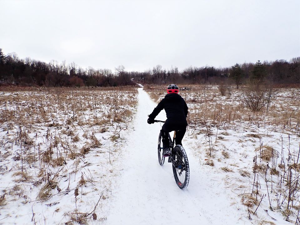 Local Trail Rides-81797487_2586052404972528_937320077697482752_o.jpg