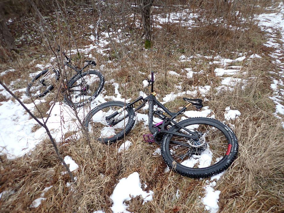 Local Trail Rides-82073245_2579169708994131_6281452763469578240_o.jpg