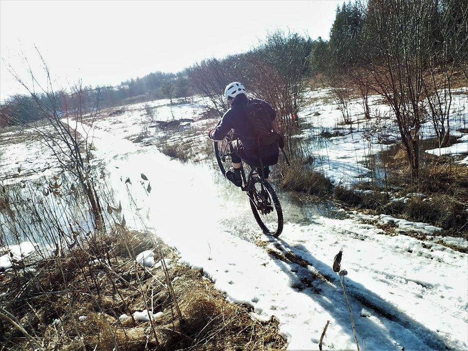 Local Trail Rides-83954655_2633402303570871_8262284550739066880_o.jpg