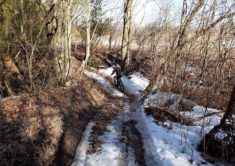 Local Trail Rides-84134955_2633413960236372_5667320934617317376_o.jpg