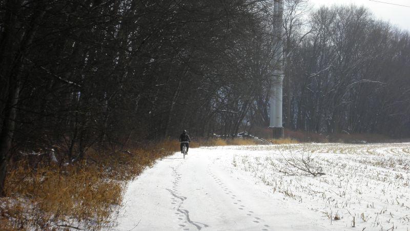 Winter Images-8451.jpg