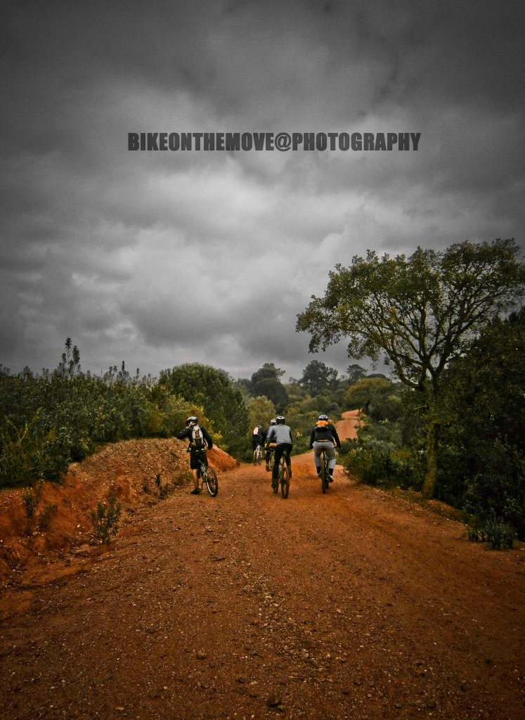 Bike Pics!-859549_512761588775679_341202284_o.jpg
