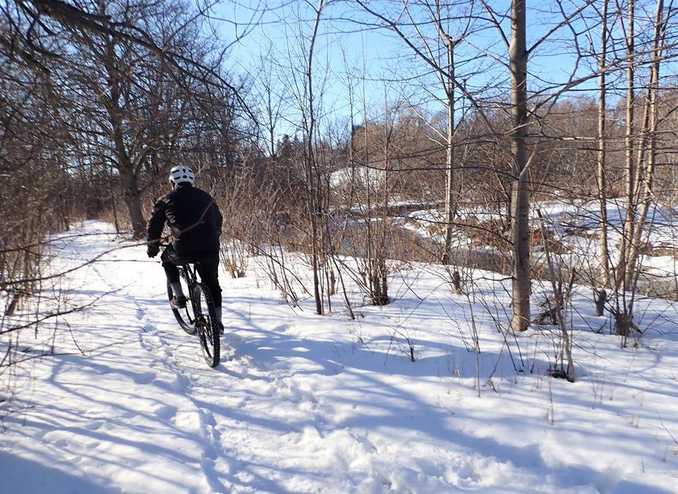 Local Trail Rides-86725086_2616733051904463_5133547548736225280_o.jpg