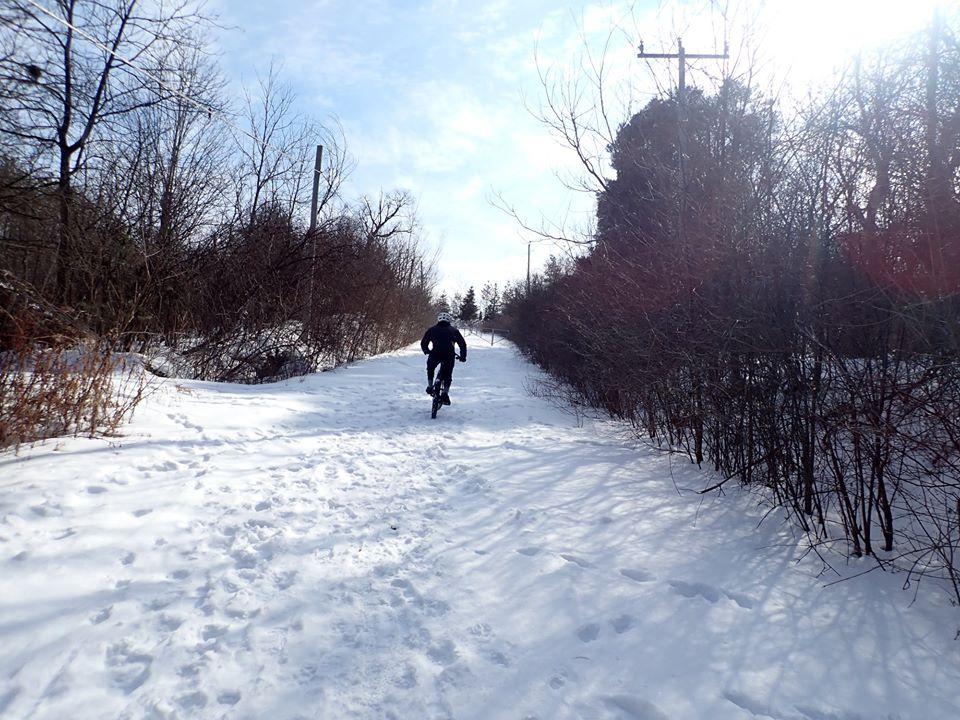 Local Trail Rides-86742799_2615932495317852_2120897074588286976_o.jpg