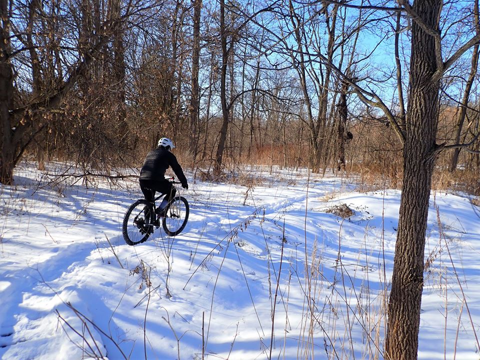 Local Trail Rides-87080794_2616710605240041_5229794218196598784_o.jpg
