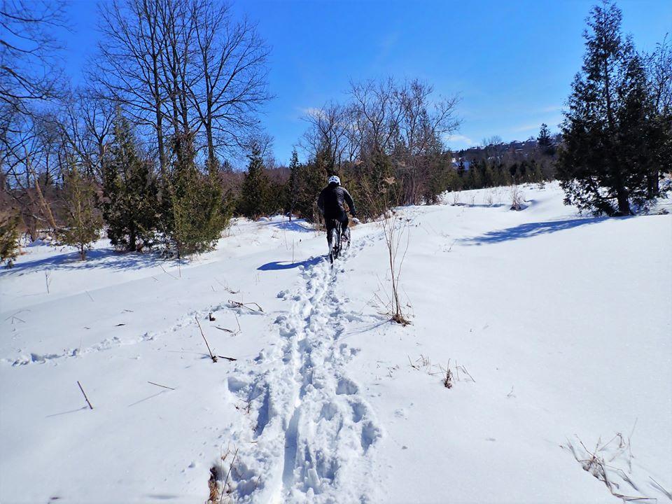 Local Trail Rides-89040110_2627548124156289_5057133045383954432_o.jpg