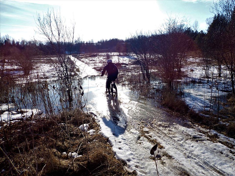 Local Trail Rides-89373560_2633435463567555_8324209814414557184_o.jpg