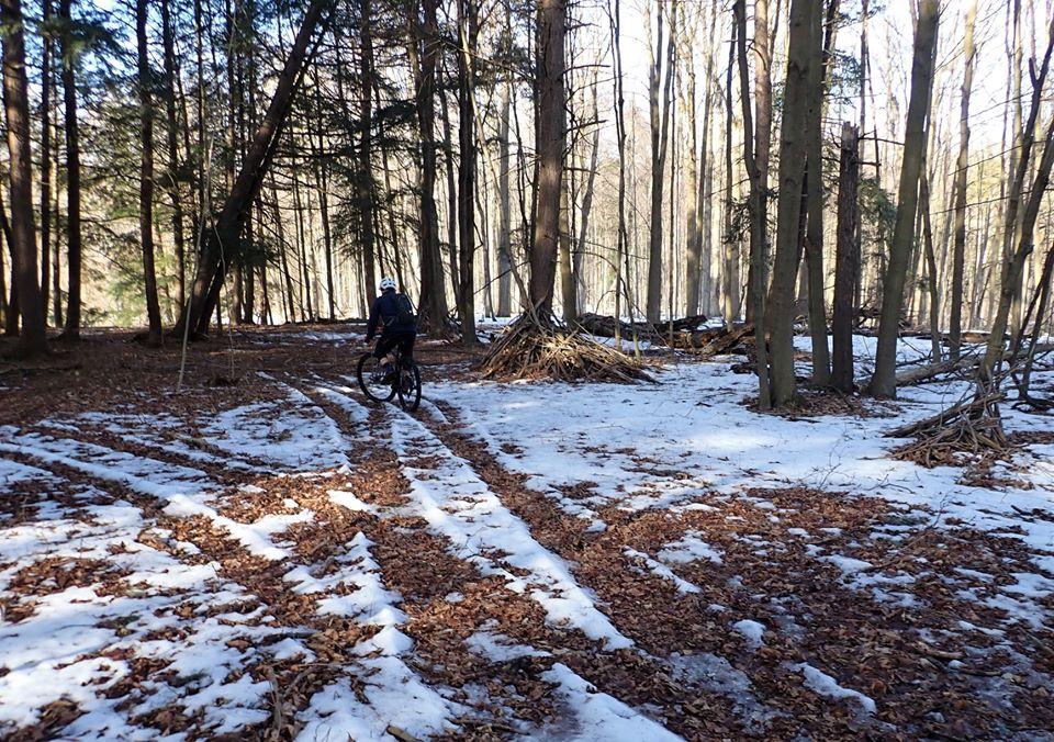 Local Trail Rides-89635353_2633419233569178_3079294751535529984_o.jpg