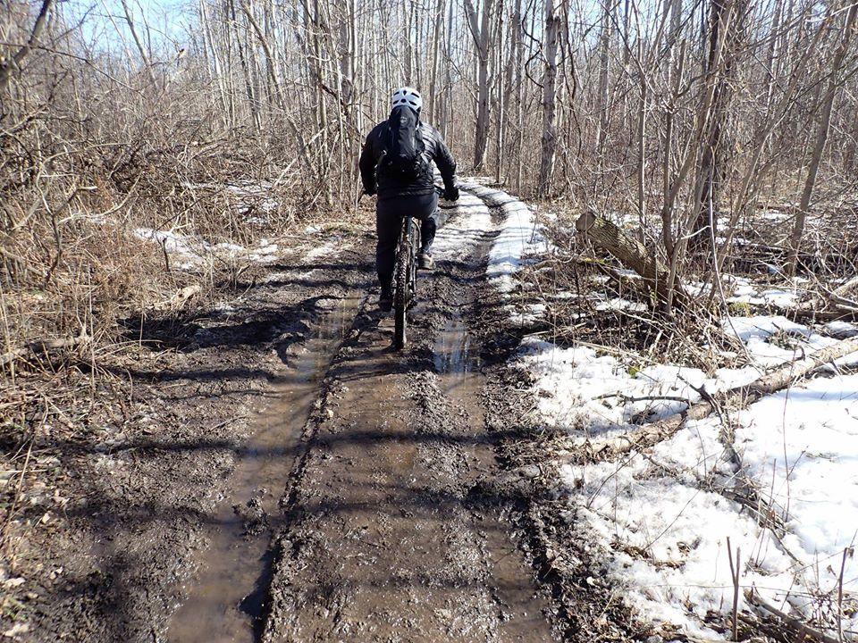 Local Trail Rides-89832654_2639357169642051_1095934345220194304_o.jpg
