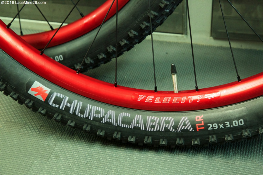 29+ wheels for sale for your fatbike.-8a3a1037.jpg