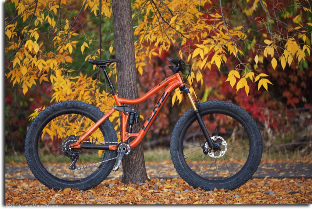 shreddy fun fat bikes?-8a3a4133.jpg
