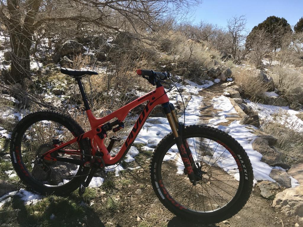 bike +  bridge pics-8d56868b-9de3-475f-984b-be5569419baf.jpg