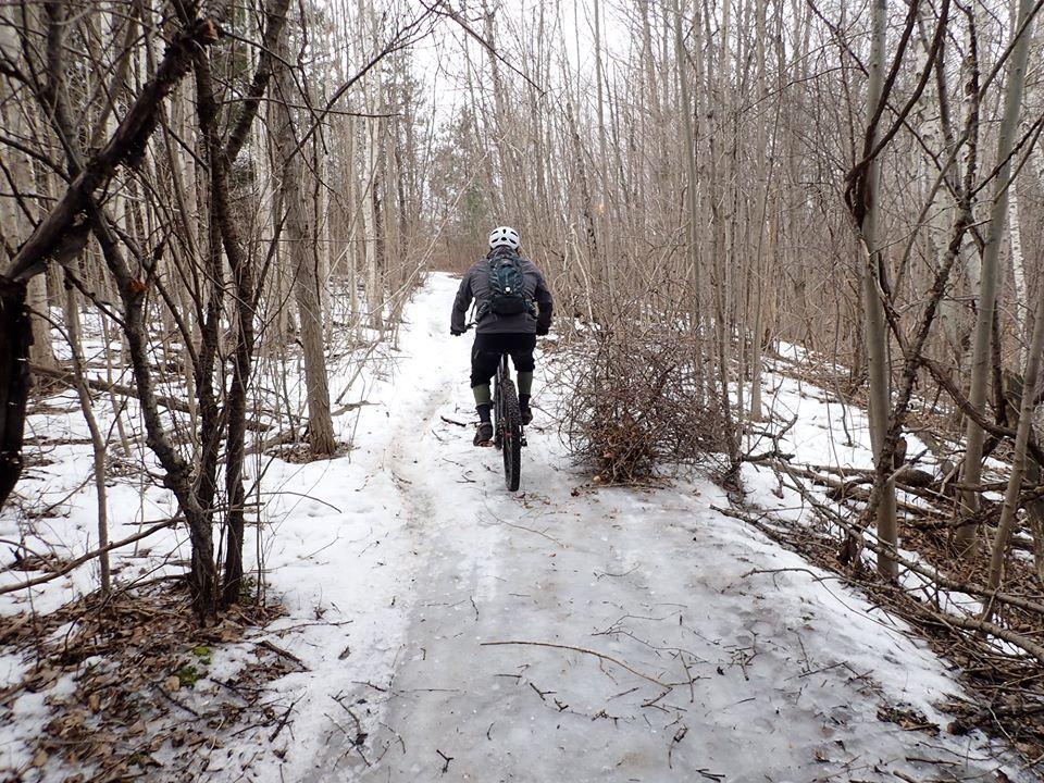 Local Trail Rides-90024755_2638544766389958_1338384510345019392_o.jpg