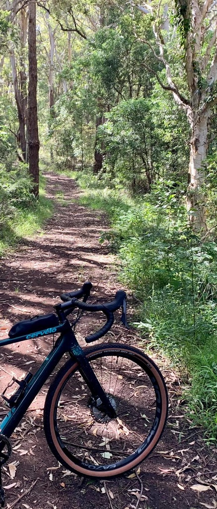 Post Your Gravel Bike Pictures-90405796_663596657784817_4130055274981490688_n.jpg