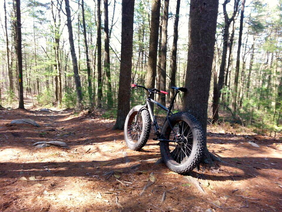 What  Fatbike related purchase made all the difference?-912091_378262685622371_1976520060_n.jpg