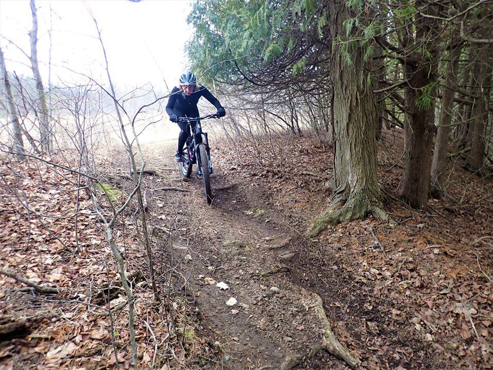 Local Trail Rides-91239831_2651396025104832_2340412874561683456_o.jpg