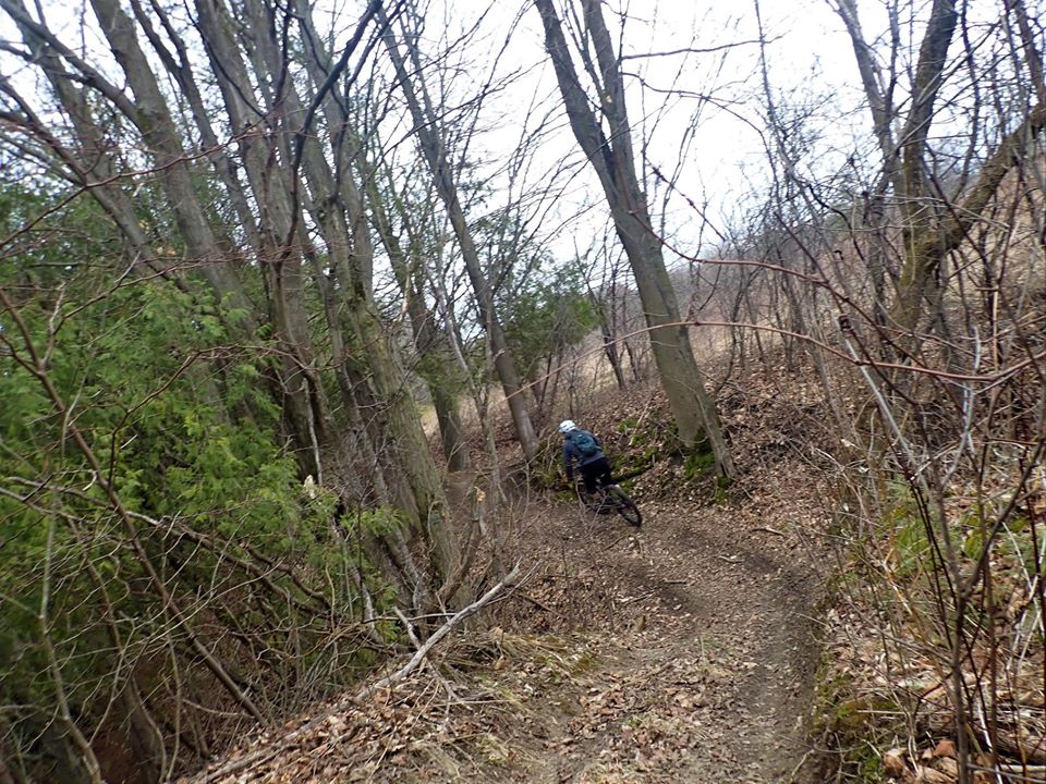 Local Trail Rides-92199648_2657362877841480_424047945109733376_o.jpg