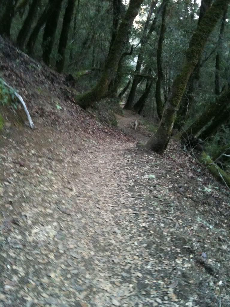 Trail Pics-92311336.jpg