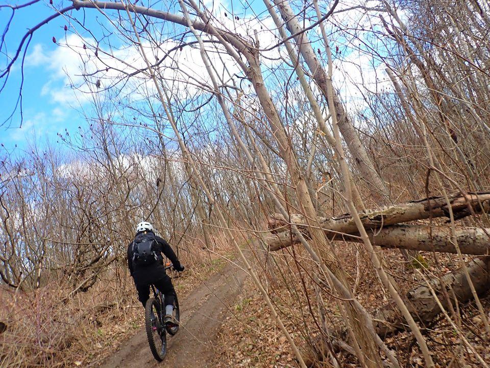 Local Trail Rides-93104593_2662575790653522_6813022998631546880_o.jpg