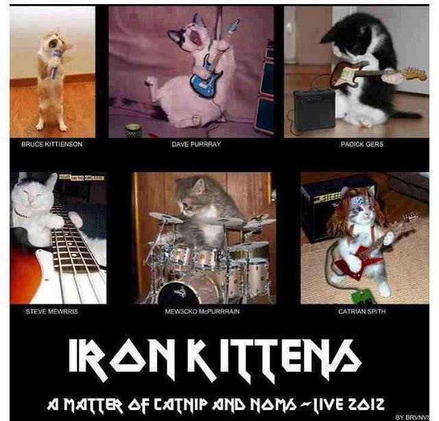 Metal Heads Unite!-935522_10152759832585133_492029108_n.jpg