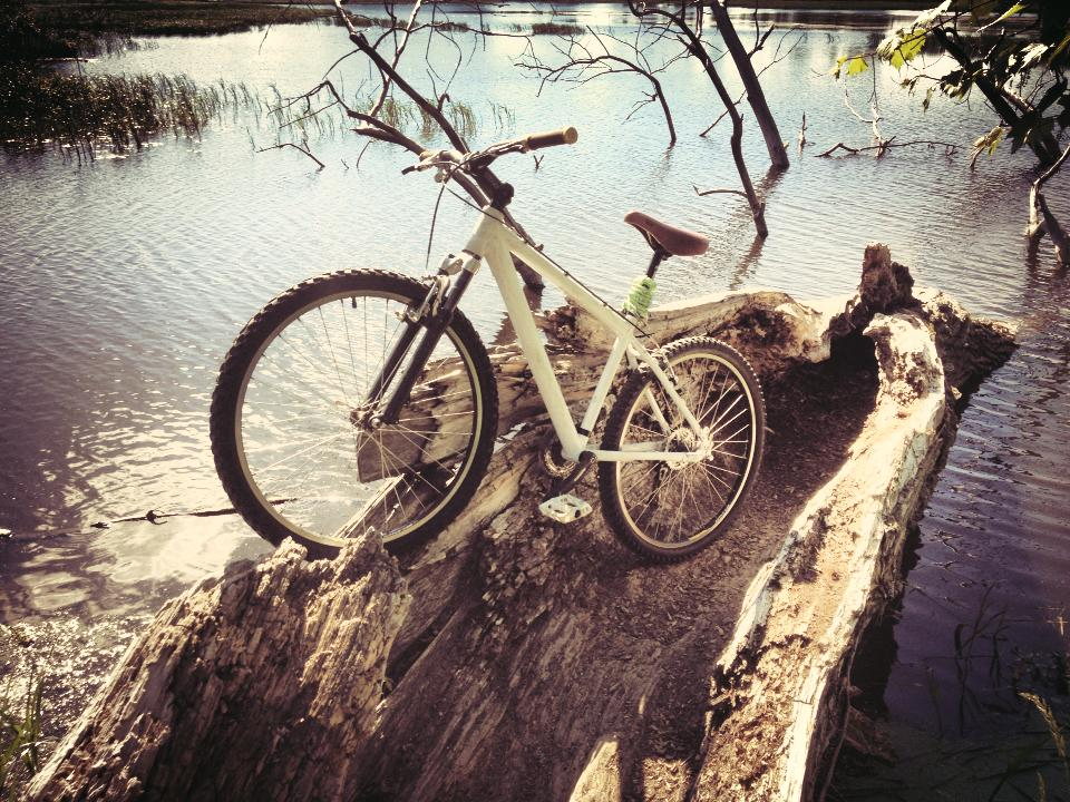 Your Best MTB Pics with the iPhone-945907_10151628449623950_944027490_n.jpg