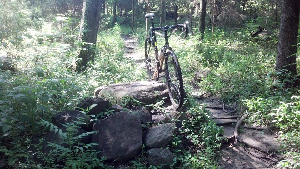 Cross Bikes on Singletrack - Post Your Photos-988647_10201383625460541_1260953074_n.jpg