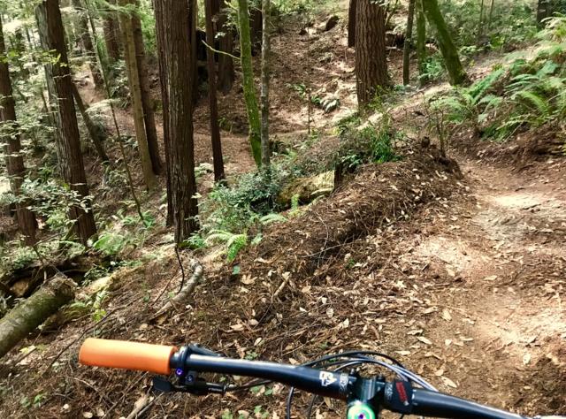 did you ride today?-99305f20-bb70-446e-86f2-ce1fb5e03245.jpeg