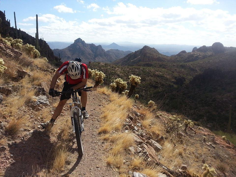 Arizona Trail!-996063_10152037319022556_1440202764_n.jpg
