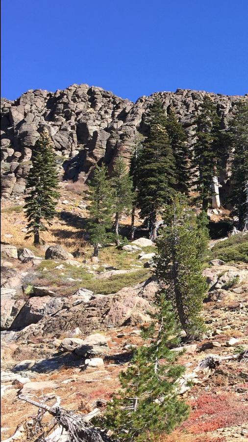 Run, don't walk to Downieville or the Sierras-9b7c7c04-6851-44c5-bcff-a5539b6ce8f4.jpg