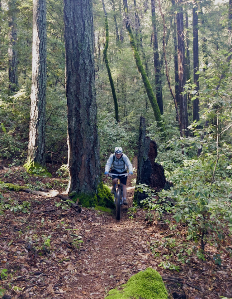 Jan 21-24, 2019 Weekly Ride and Trail Report-9bec7944-8422-43cc-9960-ae44197de037.jpg